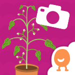 Plants Journal App Icon